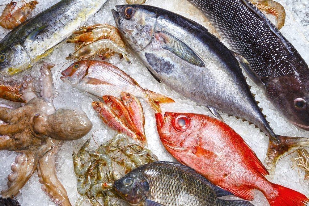 как хранить рыбу правильно