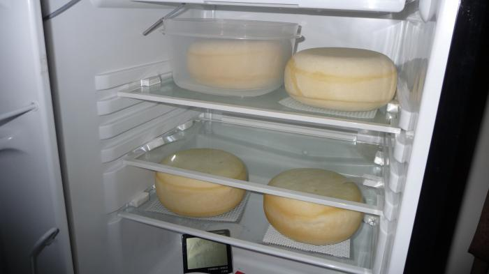 хранение сыра в холодильнике