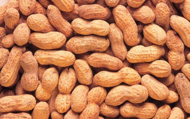 Хранение неочищенного арахиса