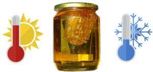 Как долго хранить мед, советы пчеловодов