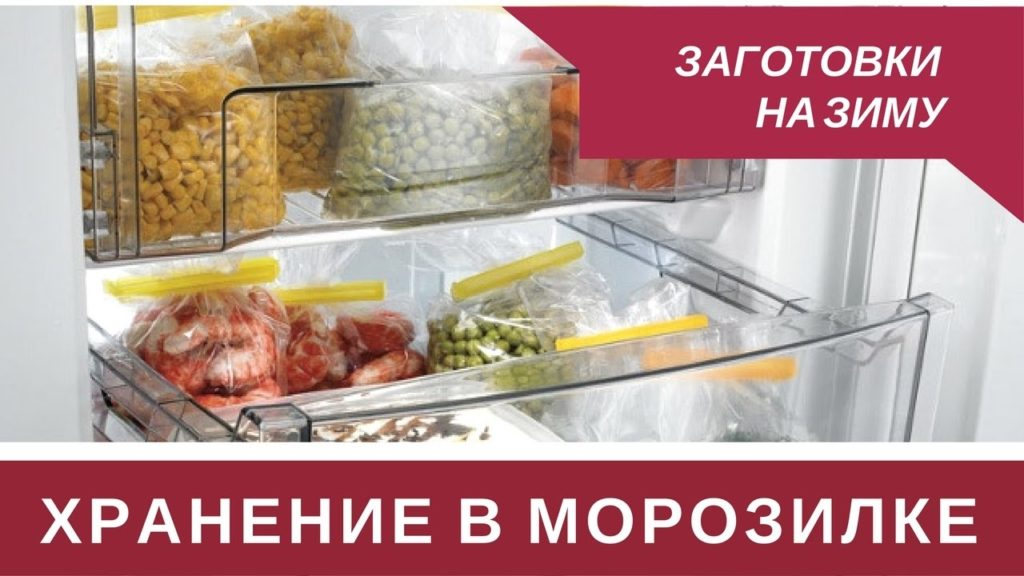 Как лучше хранить кабачки в домашних условиях
