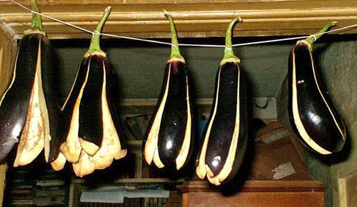 хранить сушеные баклажаны