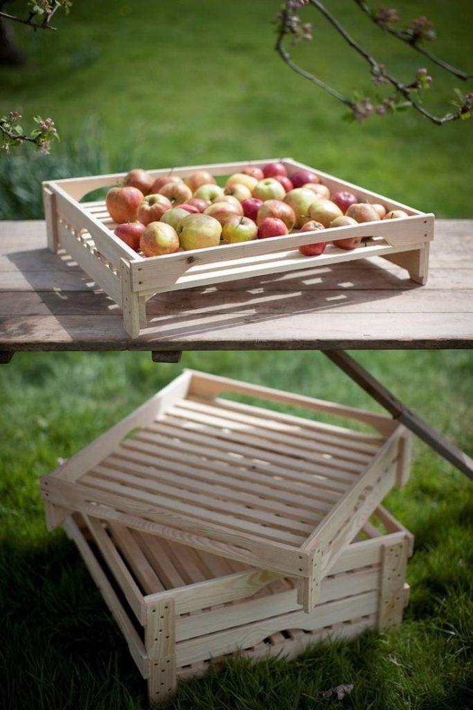 оборудование и тара для хранения яблок