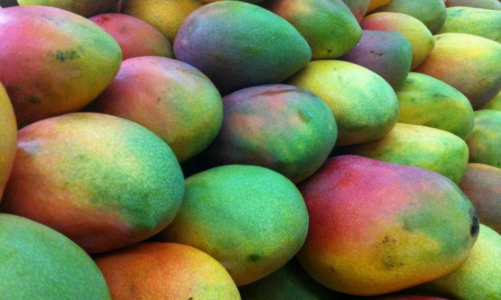 хранение неспелого манго