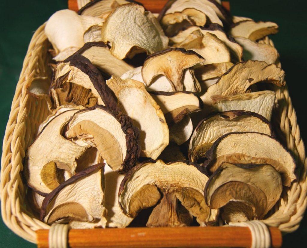как сохранить белый гриб
