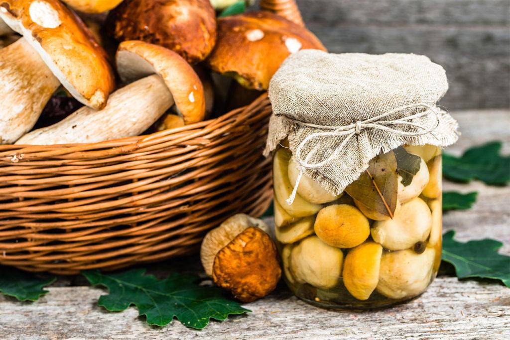 как хранить грибы боровики