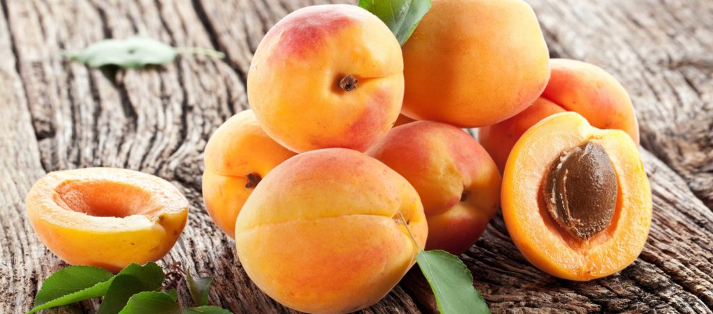 как хранить абрикосы