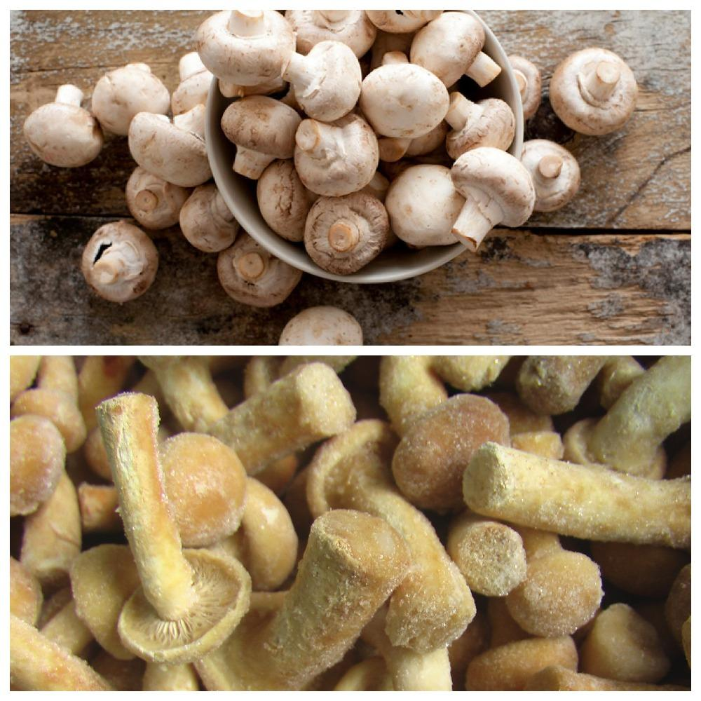 хранение вареных грибов