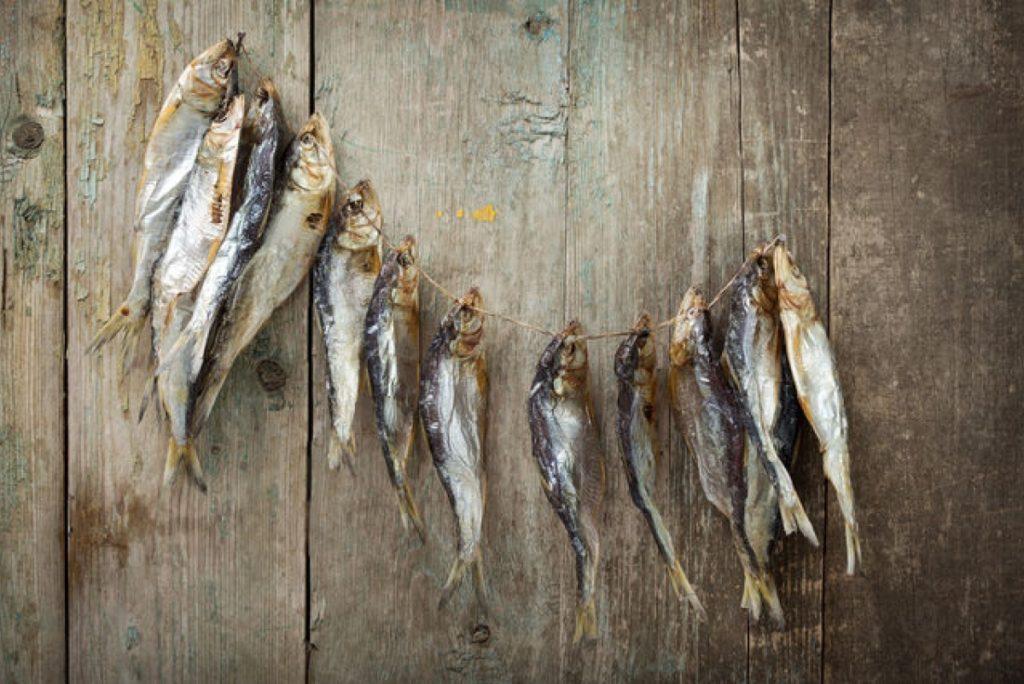 как сохранить вяленую рыбу