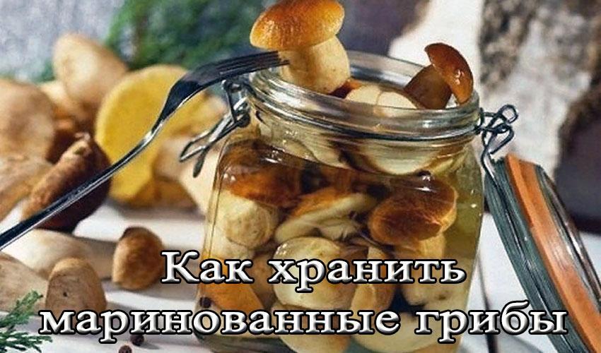 как хранить маринованные грибы