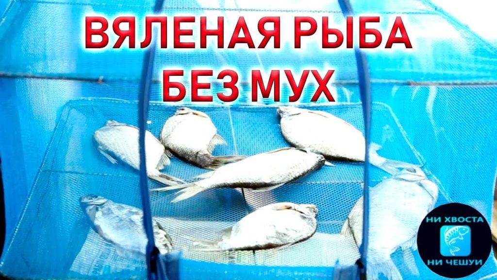 хранение сушеной рыбы