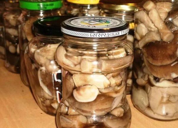 при какой температуре хранят соленые грибы
