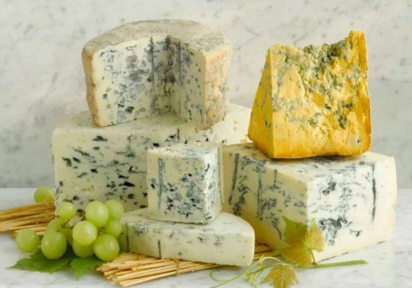 Выбор и хранение сыра с плесенью