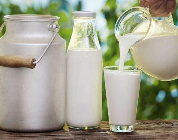 Как правильно хранить козье молоко