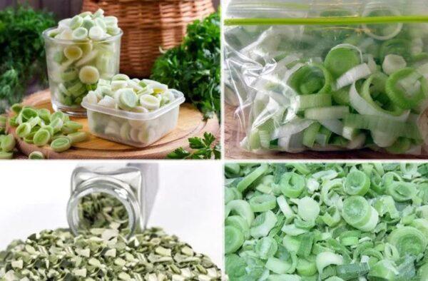 Как надолго сохранить зеленый лук